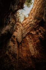 Elopement-Photography-Providence-Canyon-Georgia-EmileeAustin1